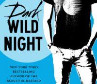 Review: Dark Wild Night by Christina Lauren