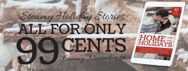 holidayfb-banner
