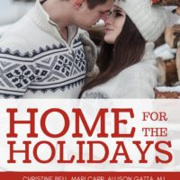 Author Guest Post: Abigail Owen (Don't Open Until Christmas)