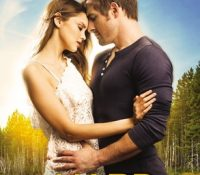 Review: Too Hard to Forget by Tessa Bailey