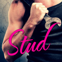 Sunday Snippet: Stud by Kelly Siskind