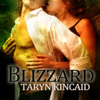 Review: Blizzard by Taryn Kincaid