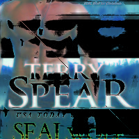 Review: SEAL Wolf In Too Deep by Terry Spear