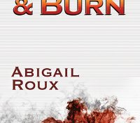 Blog Tour + Review: Crash & Burn by Abigail Roux