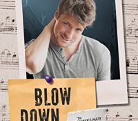 Review: Blow Down by JL Merrow