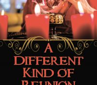 Sunday Snippet + Giveaway: A Different Kind of Reunion by Joanne Guidoccio