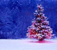 Merry Christmas and Season's Greetings 2018!