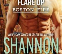 Review: Flare Up by Shannon Stacey