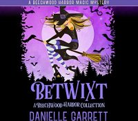Listen Up! #Audiobook Review: Betwixt: A Beechwood Harbor Collection by Danielle Garrett