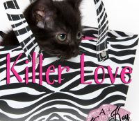 Book Spotlight: Finders Keepers Box Set (Killer Love)