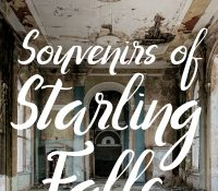Sunday Snippet: Souvenirs of Starling Falls by Holly Tierney-Bedord