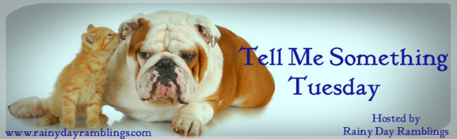 Blog Header for Tell Me Something Tuesday with cat whispering in dog's ear