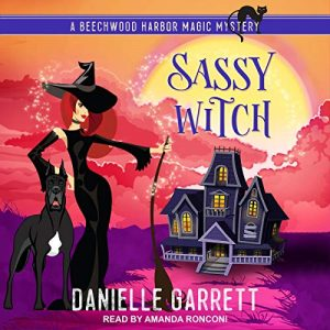 Book Cover Sassy Witch by Danielle Garrett